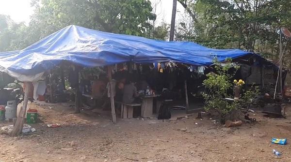 Vụ gỗ lậu ở Đắk Lắk: Bắt đàn em thân tín của trùm Phượng 'râu'