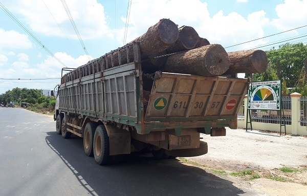 Vì sao xe gỗ lậu Phượng 'râu' lọt hàng loạt đồn biên phòng?