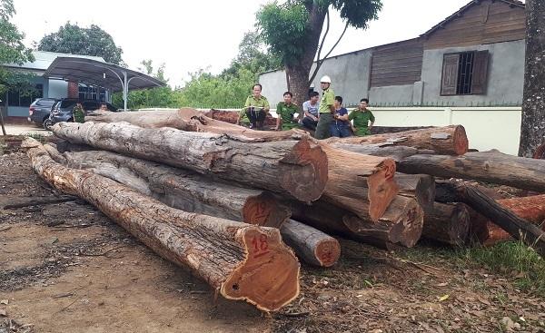 Vụ bắt gỗ lậu tại Đắk Lắk: Thông tin bất ngờ từ Cục Kiểm lâm