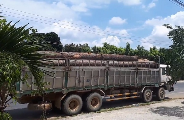 Bắt gỗ lậu,VQG Yok Đôn,Bộ Công an,Phượng râu,Đắk Lắk,Đắk Nông