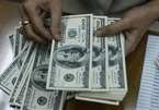 Tỷ giá ngoại tệ ngày 2/5: USD điều chỉnh nhẹ