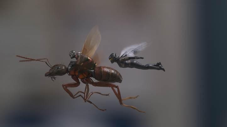 Ant-Man hóa khổng lồ trong 'Người Kiến và Chiến binh Ong'