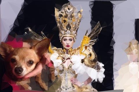 Võ Hoàng Yến khóc nức nở khi cún cưng bị gãy răng
