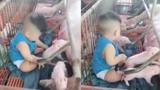 Cậu bé vô tư đùa nghịch với đàn lợn con