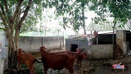 Công trình chục tỷ bỏ hoang: Công an tỉnh làm việc nhanh với xã Bồ Lý