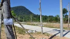 Phú Quốc tạm dừng chuyển đổi đất phân lô tách thửa