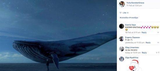 'Thử thách cá voi xanh': Địa ngục trần gian của người tham gia