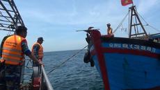 Phát hiện tàu giã cào khai thác hải sản trái phép trên vùng biển Quảng Trị