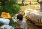 Đà Nẵng: Động cơ rùng rợn vụ giết người phi tang xác nhiều nơi