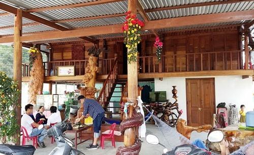 gỗ lậu,gỗ quý,nhà gỗ