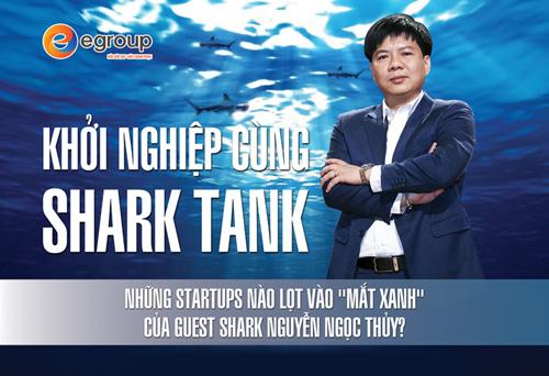 Shark Thuỷ: 'Startup cần kiên định với ngọn lửa đam mê'