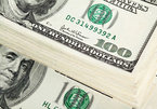 Tỷ giá ngoại tệ ngày 16/5: USD quay đầu tăng vọt