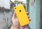 """iPhone 2018 sặc sỡ với """"áo mới"""" xanh, vàng, hồng nổi bật"""