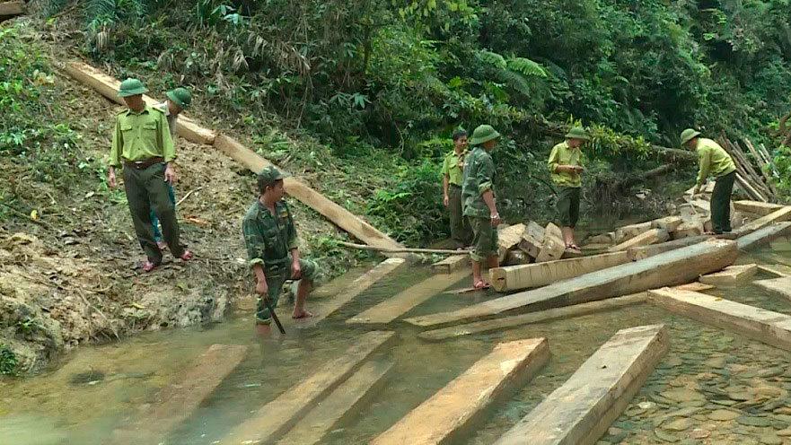 Vụ phá rừng đầu nguồn Quảng Bình: Phó chủ tịch huyện bị kỉ luật