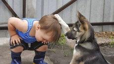 """Không nhịn được cười với phản ứng khi gặp """"con vật đáng sợ"""""""