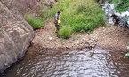 Tìm thấy thi thể nghi phượt thủ mất tích 7 ngày ở Tà Năng - Phan Dũng