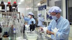 Cục Quản lý Dược: DN tự chịu trách nhiệm về chất lượng thuốc