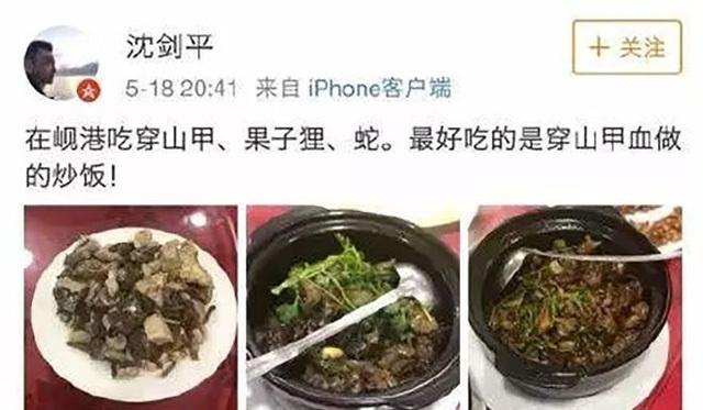 Nhậu động vật quý hiếm Việt Nam, Phó chủ tịch tập đoàn Trung Quốc bị sa thải
