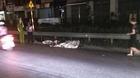 Đi vệ sinh, người đàn ông bị tàu SE19 đâm tử vong ở Hà Nội