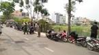 Trẻ sơ sinh bị đàn heo kéo lê, tử vong ở Sài Gòn