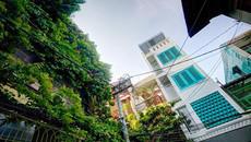 Nhà phố độc đáo xanh ngắt như da trời