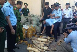 Việt Nam quyết xoá bỏ buôn bán trái phép động vật hoang dã