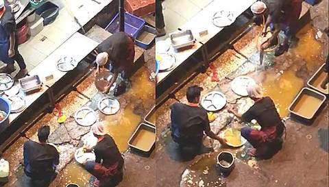 nhân viên nhà hàng rửa đĩa trong vũng nước