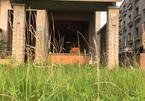 KĐT Kim Chung – Di Trạch: Quy hoạch hoành tráng để…trồng cỏ gần thập kỷ