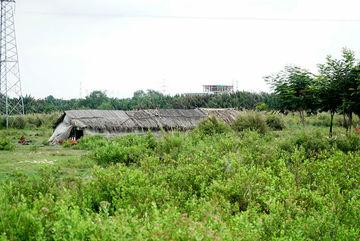 Khu đất 32 ha 'bán rẻ' cho công ty Quốc Cường Gia Lai giờ ra sao?