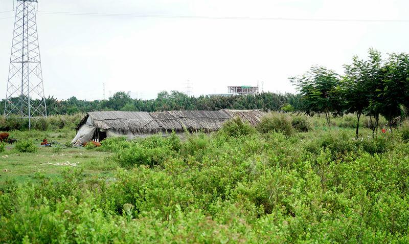 dự án Phước Kiển,Công ty Tân Thuận,công ty Quốc Cường,đất công,Tất Thành Cang