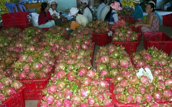 CPTPP,EVFTA,Bộ NN-PTNT,ngành nông nghiệp,xuất khẩu nông sản,nông sản Việt