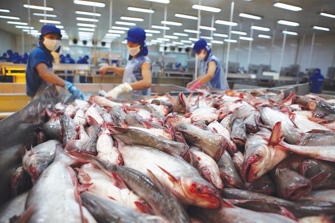 Dương Ngọc Minh,thủy sản Hùng Vương