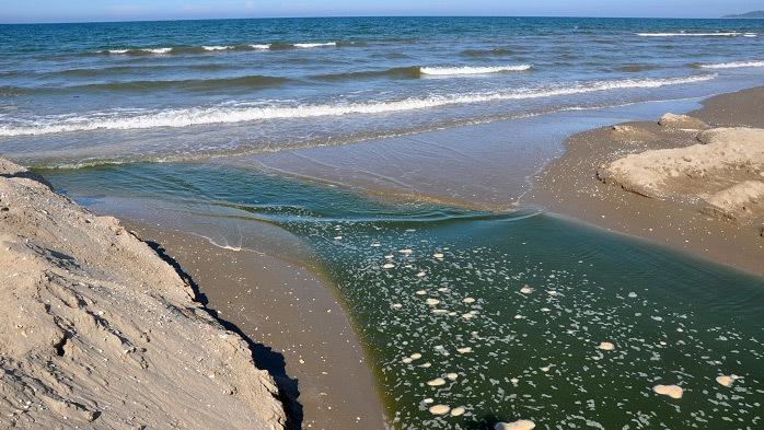 Trại tôm xả nước thải thẳng ra môi trường