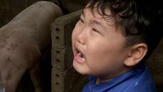 """Con trai Xuân Bắc khóc lóc vì bị """"phân biệt đối xử"""""""