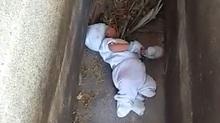 Giải cứu bé sơ sinh bị bỏ rơi trong nghĩa địa