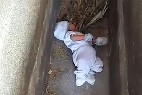 giải cứu bé sơ sinh bị bỏ rơi ở nghĩa địa