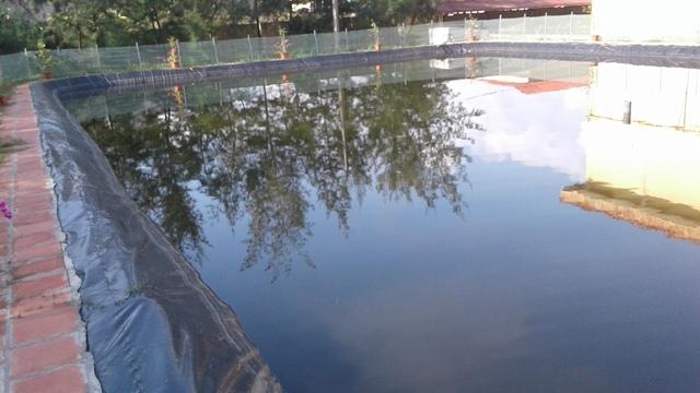 Kiểm điểm tập thể, cá nhân trong việc xây bể bơi xong rồi lấp bỏ