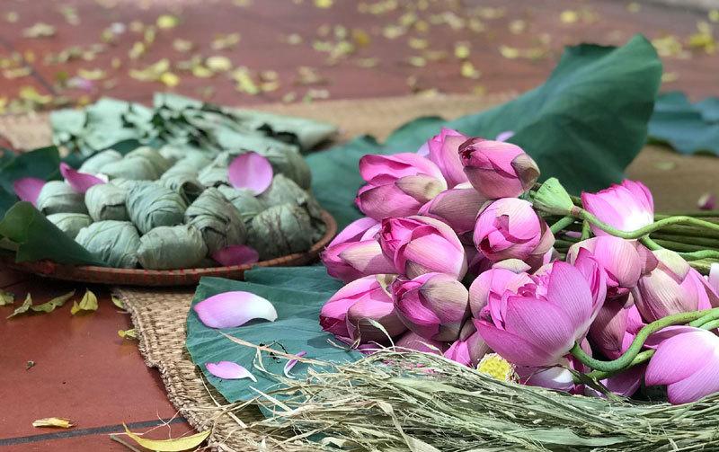 Chị gái Hà Thành hái 5.000 bông sen 100 cánh ướp trà chiều khách