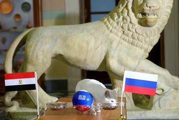 Mèo Achilles tiên tri Nga thắng Ai Cập đêm nay