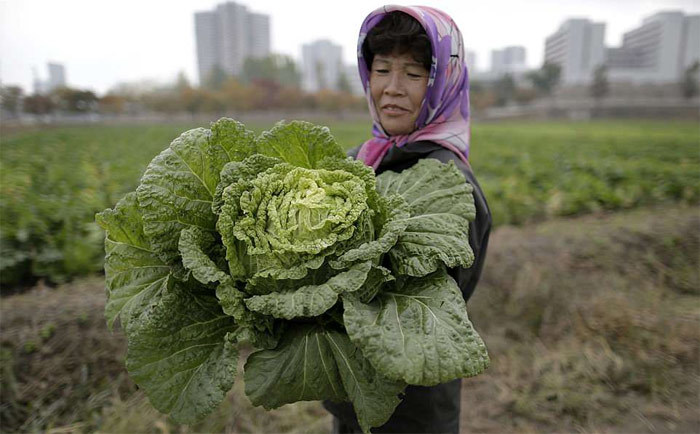 Hình ảnh Triều Tiên đang nhanh chóng 'thay da đổi thịt'