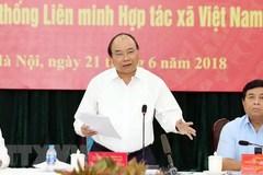 Thủ tướng: Cần tổ chức lại hoạt động các hợp tác xã