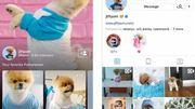Instagram gây sốc với tuyên bố có 1 tỷ người dùng