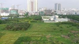 Có được tặng cho đất nằm trong dự án quy hoạch?