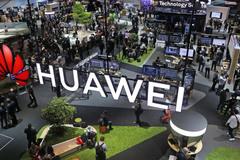 Nghị sĩ Mỹ đòi điều tra hoạt động Huawei trong các trường đại học