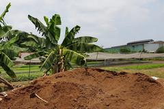 Khuất tất vụ thi hành án ở huyện Củ Chi: Đất giá 10 tỷ đồng, bán 1,7 tỷ đồng
