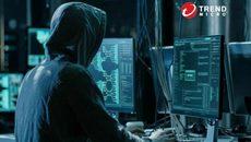 Tiết lộ vụ truy lùng nhóm tội phạm mạng nguy hiểm nhất thế giới