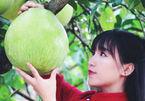 Hot girl Tứ Xuyên lại khiến dân mạng chao đảo với clip hái rau, cắm hoa