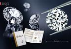 Kim cương viên kích thước 8,1 ly giá từ 450 triệu đồng