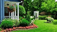 Cuộc tình vụng trộm của nữ bác sĩ bên biệt thự vườn