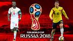 Kèo Senegal vs Colombia: Tự tin theo vũ điệu Nam Mỹ